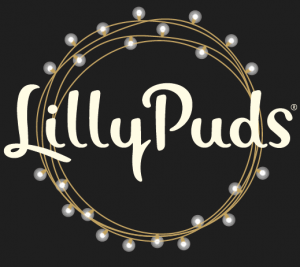 LillyPuds Christmas Pudding